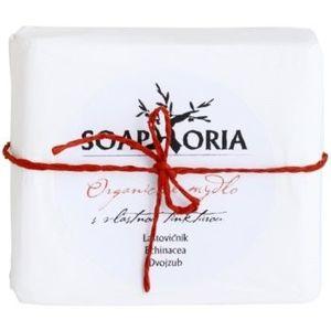 Soaphoria Organic săpun pentru piele problematică imagine