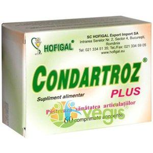 Condartroz Plus 60cpr imagine