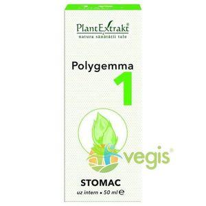POLYGEMMA NR.1 50ML (STOMAC) imagine