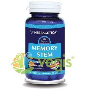 Memory Stem 30cps imagine