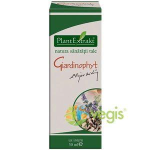 Giardinophyt 30ml imagine