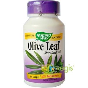 Olive Leaf 60cps 20% Oleuropein imagine