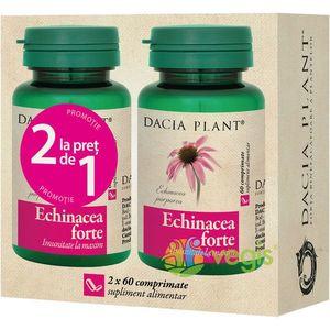 Echinacea Forte 60Cpr Pachet 1+1 imagine