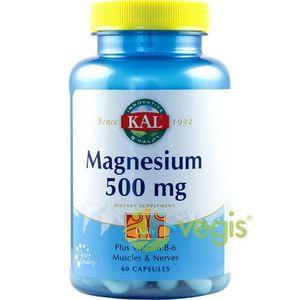 Magnesium 500Mg 60Cps imagine