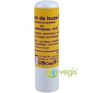 Virginia Balsam pentru Buze cu Echinacea Bio 5ml imagine