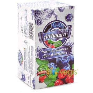 Ceai Fructe De Padure Cu Afine si Merisoare 20Dz imagine