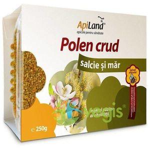 Polen 100 g imagine