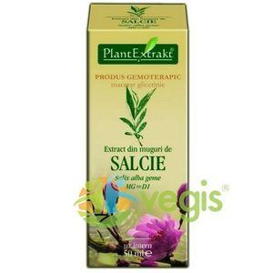 Extract Salcie Muguri 50ml imagine