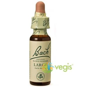 Bach 19 Larch (Larita) Picaturi 20ml imagine
