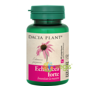 Echinacea Forte 60cpr imagine