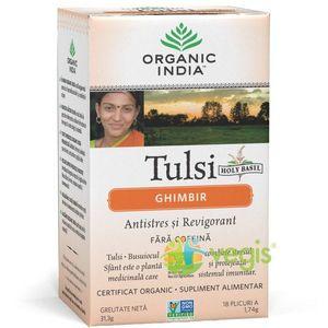 Ceai Tulsi cu Ghimbir Eco/Bio 18pl imagine