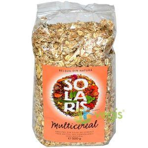 Fulgi De Cereale - Amestec Multicereal (Punga)500gr imagine