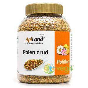 Polen Crud Poliflor 500g imagine