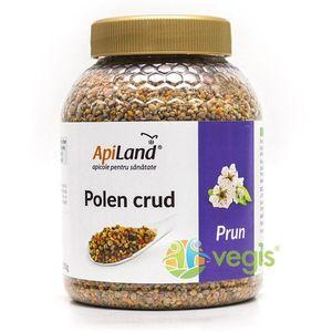 Polen Crud de Prun 500g imagine