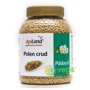 Polen Crud de Paducel 500g imagine