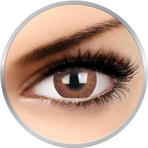 ZenVu Vogus Brown - lentile de contact colorate maro trimestriale - 90 purtari (2 lentile/cutie) imagine