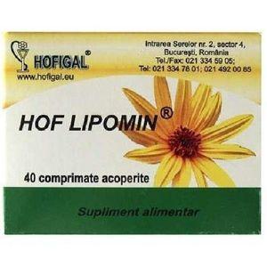 Hof Lipomin Hofigal imagine