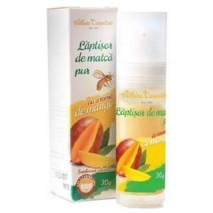 Laptisor de Matca Pur cu Aroma de Mango 30gr Albina Carpatina imagine