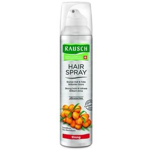 Fixativ Strong Aerosol 250ml Rausch imagine