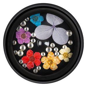 Flori Naturale Uscate imagine