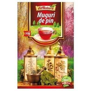 Ceai Muguri de pin, 50 grame imagine