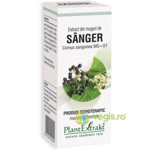 Extract Sanger Muguri 50ml imagine