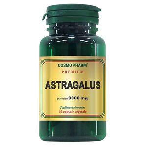 Astragalus extract echivalent 9000 mg, 60 capsule, Cosmopharm imagine