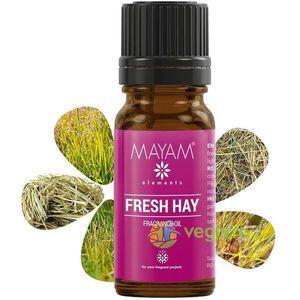 Parfumant Fresh Hay (Iarba Proaspata) 10ml imagine