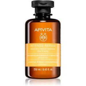 Apivita Holistic Hair Care Olive & Honey șampon intens hrănitor imagine