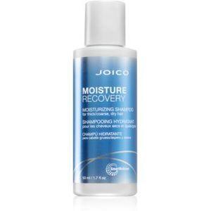 Joico Moisture Recovery sampon hidratant pentru par uscat imagine